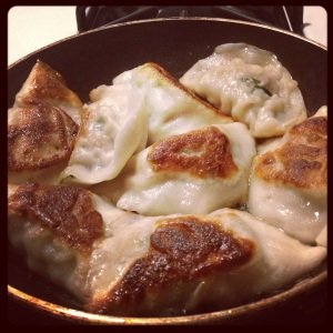 Pan fried to-go Pork and Chive Tea Magic dumplings