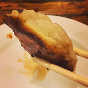 Pan fried pork dumplings at the Winsor