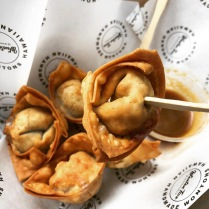 Papu's Tofu and Veggie wontons from Wonton Tiva