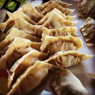Wontons waiting to be steamed